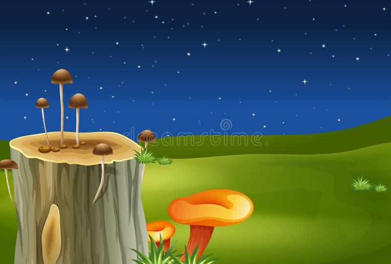 En stubbe med champinjoner stock illustrationer