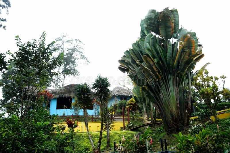 En stuga sorrounded av naturen royaltyfria foton