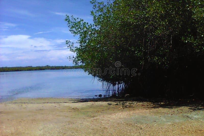 En Sunny Beach Day arkivbild