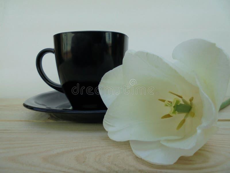 En svart kopp med ett tefat och bredvid den är en vit tulpanblomma royaltyfria bilder