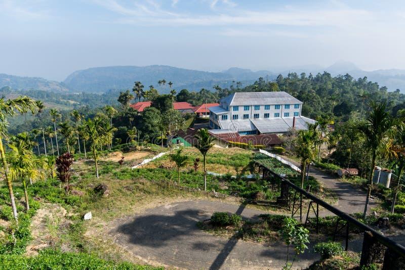 En tefabrik, Sri Lanka arkivfoton