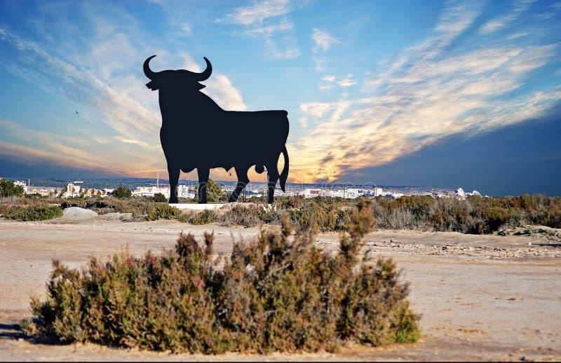 En tjur i Spanien royaltyfria foton