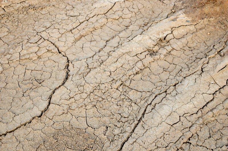 En torr sjö eller ett träsk i processen av torkan och brist av regn eller fuktighet, en global naturkatastrof royaltyfri foto