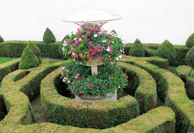 En trädgård i cirklar med blommor arkivbilder