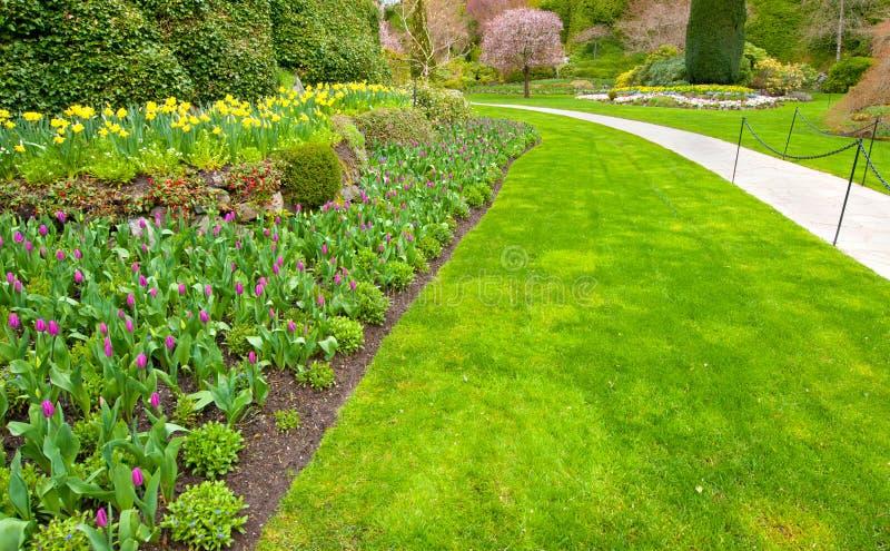 En trädgård med frodig grön gräsmatta- och tulpanrabatt arkivfoto