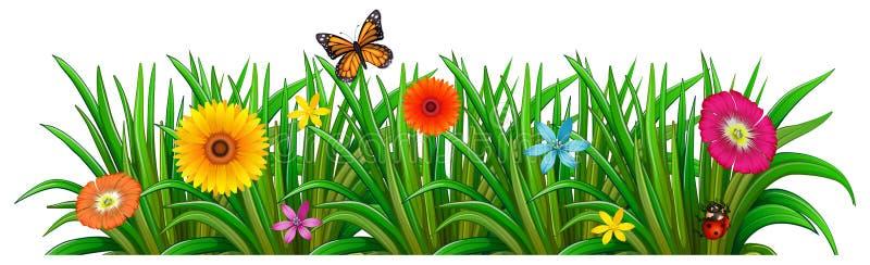 En trädgård med nya blomma blommor, en fjäril och en nyckelpiga royaltyfri illustrationer