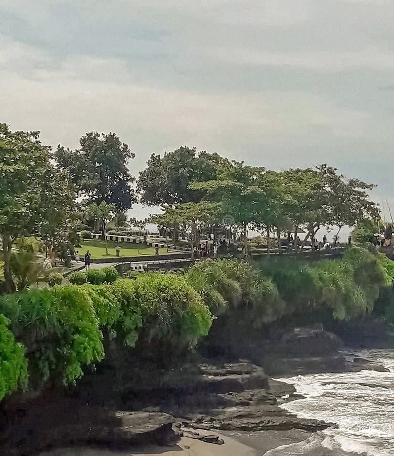 En trädgård nära till havskusten arkivbilder