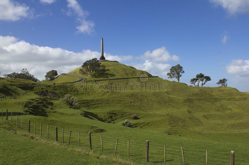 En trädkulle parkerar Auckland Nya Zeeland arkivfoto