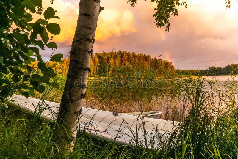 En träeka på solnedgången på kusterna av den lugna Saimaa sjön i Finland under en nordisk himmel med en regnbåge - 2 royaltyfria foton