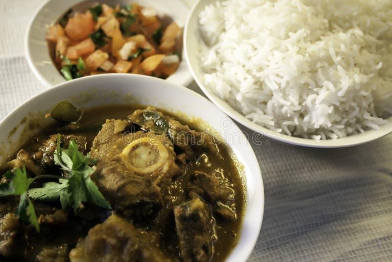 En traditionell indisk lammcurry med ris och sallad royaltyfri bild