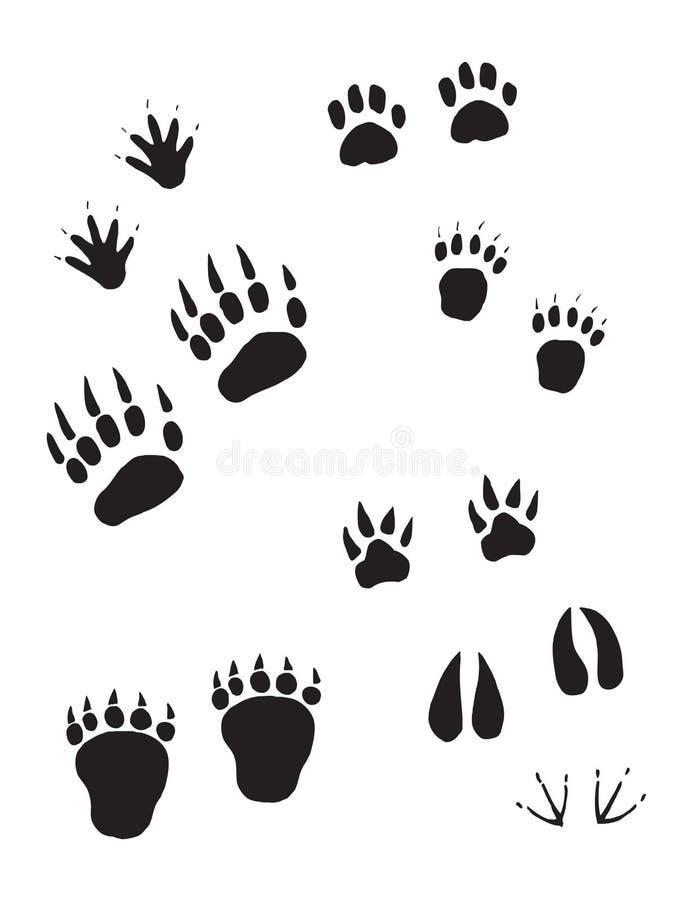 En trevlig variation av djura spår royaltyfri illustrationer