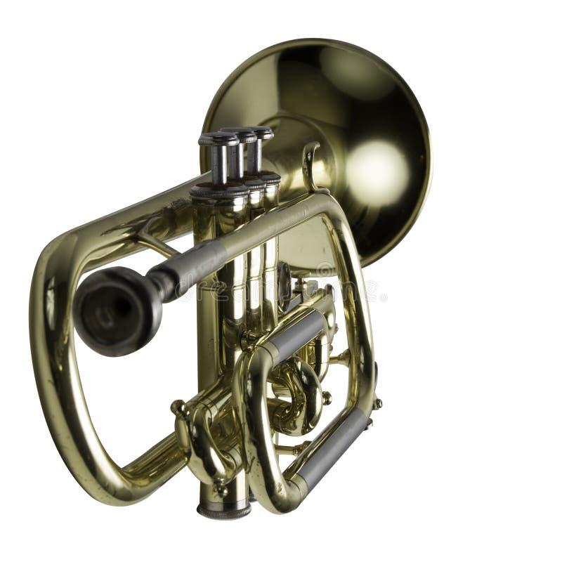 En trumpet med fokusen på tangenterna royaltyfri illustrationer