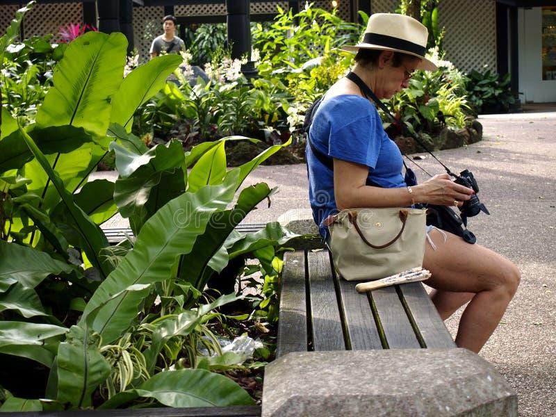 En turist vilar på en parkerabänk och ser bilder arkivfoto