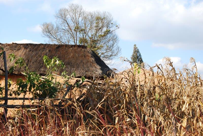 En typisk byggnad gjord av lera och lera i Pomerini i Tanzania - Afrika royaltyfria bilder