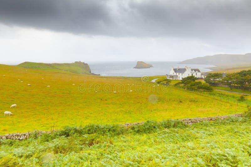 En typisk lantgård med fåravel i ön av Skye arkivbilder