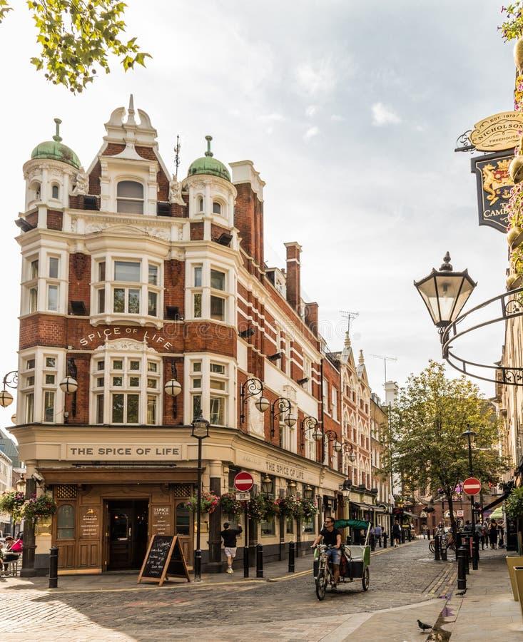En typisk sikt i london royaltyfri fotografi