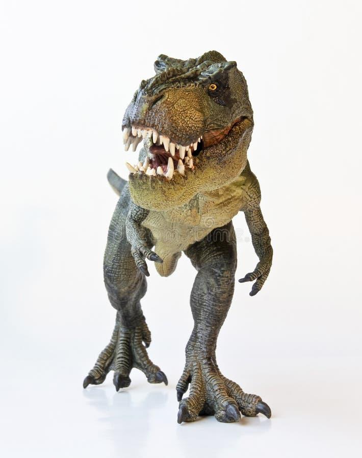 En Tyrannosaurus jagar på en vitbakgrund royaltyfri foto