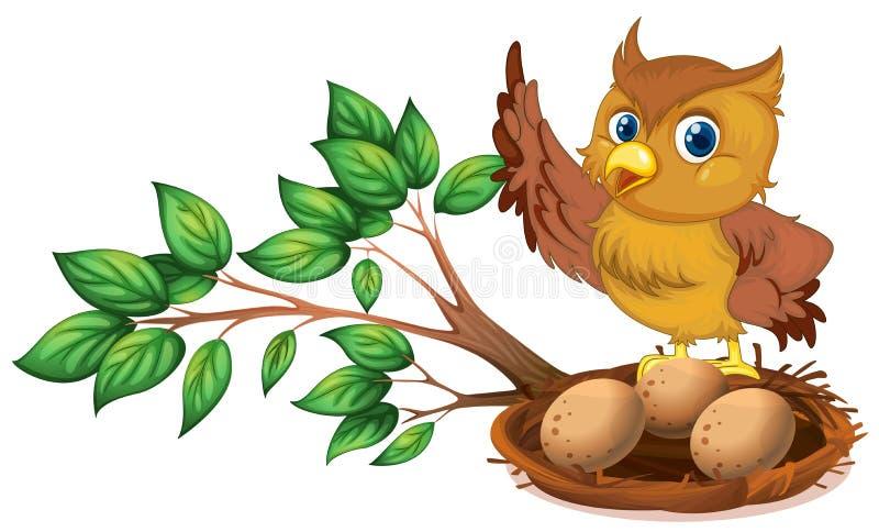 En uggla som håller ögonen på äggen royaltyfri illustrationer
