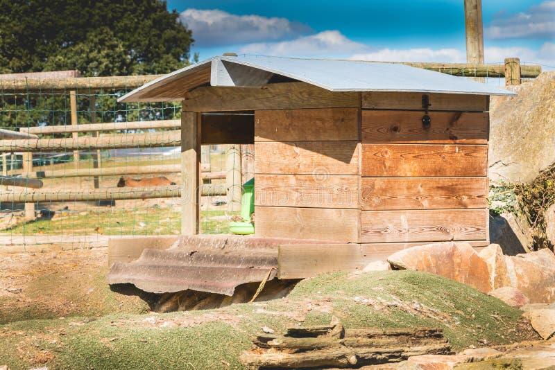 En un recinto, una cabina sirve el gallinero fotos de archivo