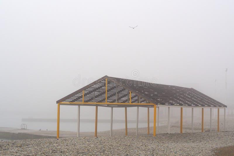 En una mañana de niebla fotos de archivo