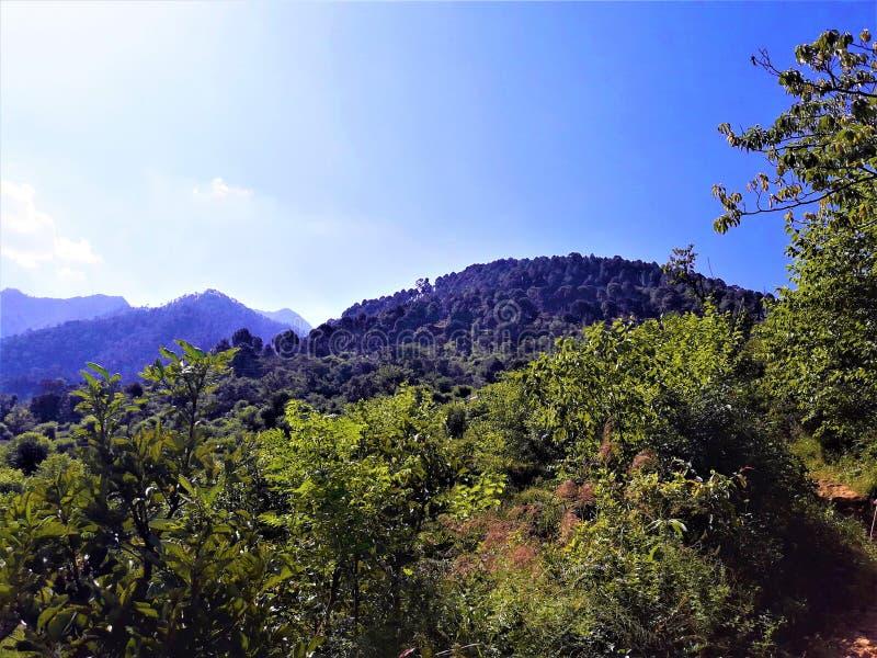 En underbar nära sikt av blå himmel & landskapet med grönska royaltyfria foton