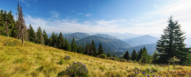 En underbar sikt i de Carpathian bergen Sinevir royaltyfri foto