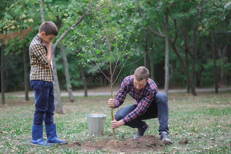 En ung fader och hans son planterar ett träd i deras gård Två pojkar planterar växter för jorddag royaltyfria bilder