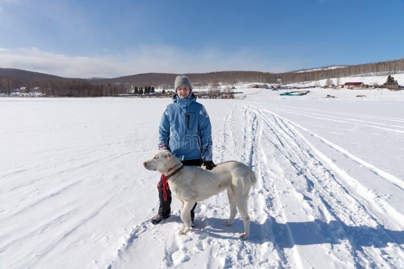 En ung flicka med en stor vit herdehund står på en snövit djupfryst sjö mot bakgrunden av royaltyfri fotografi
