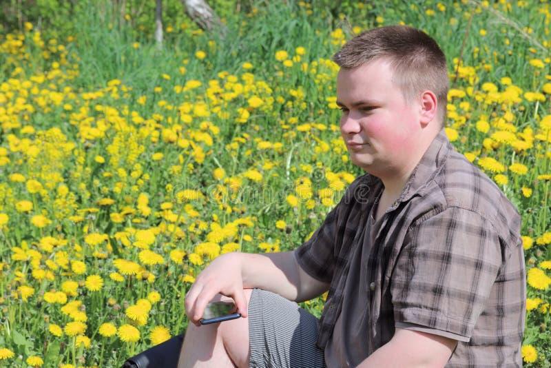 En ung fyllig man sitter i en äng med att blomma maskrosor Rymmer en smartphone i hans hand Pensively se framme av honom royaltyfria foton