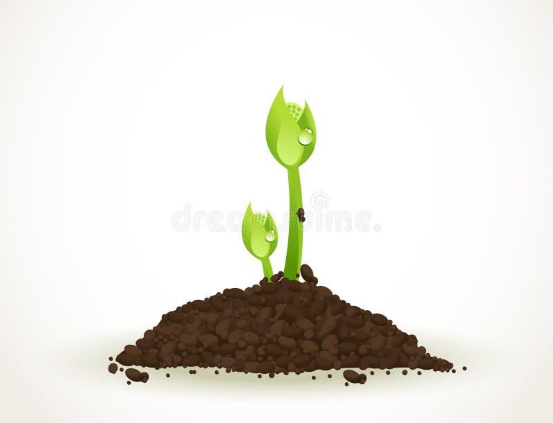 En ung grodd i smuts som isoleras på vit, illustration för materiel för Eco-vänskapsmatch abstrakt bakgrundsvektor vektor illustrationer