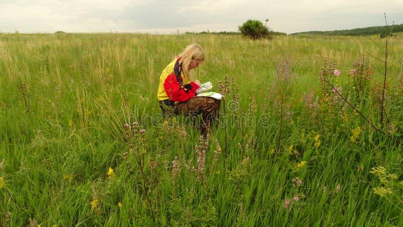 En ung konstnär i fältattraktionerna ett landskap royaltyfria foton