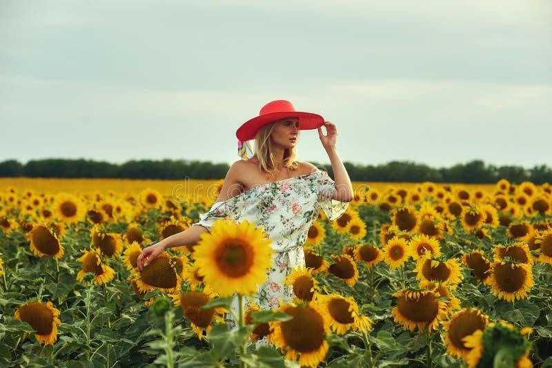 En ung kvinna i en klänning och en bredbrättad hatt går i ett fält av solrosor royaltyfria bilder