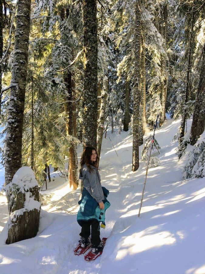 En ung kvinnlig snowshoer som snowshoeing till och med snön, täckte nytt skogar av cypressberget på en härlig solig vinterdag arkivfoton