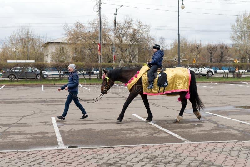 En ung man leder en elegant häst, som en pojke rider på på gatan, under berömmen av Victory Day WWII fotografering för bildbyråer