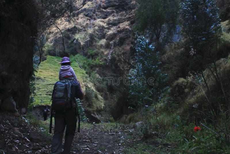 En ung pappa som går eller vandrar med sitt barn till naturen royaltyfria bilder