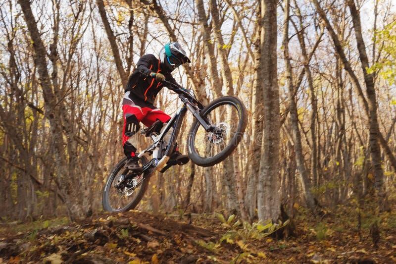 En ung ryttare på hjulet av hans mountainbike gör ett trick i banhoppning på språngbrädan av det sluttande berget royaltyfri foto