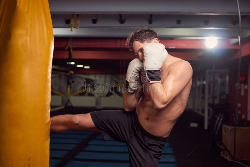 En ung shirtless man, boxareben som slår stansa påsen som är practic royaltyfria bilder