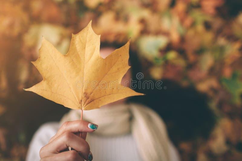 En ung svart-haired kvinna rymmer Autumn Leaf Hösten lämnar i en parkera arkivfoton