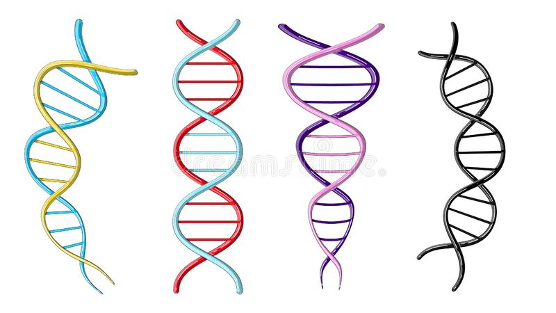 En uppsättning av fyra mångfärgade härliga medicinska vetenskapliga vridna strukturer av spiral av abstrakta modeller av DNAgener stock illustrationer