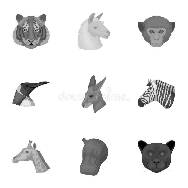En uppsättning av symboler av vilda djur Rov- och fridsam vilda djur Realistisk djur symbol i uppsättningsamling på royaltyfri illustrationer