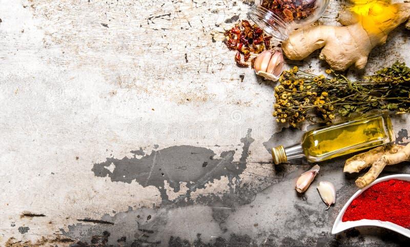 En uppsättning av torkade kryddor och örter med olivolja royaltyfria foton
