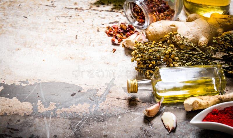 En uppsättning av torkade kryddor och örter med olivolja arkivfoton