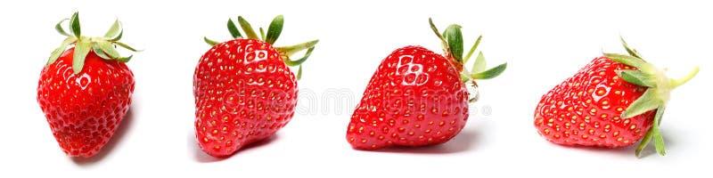 En upps?ttning av den nya jordgubben som isoleras p? vit bakgrund royaltyfri fotografi