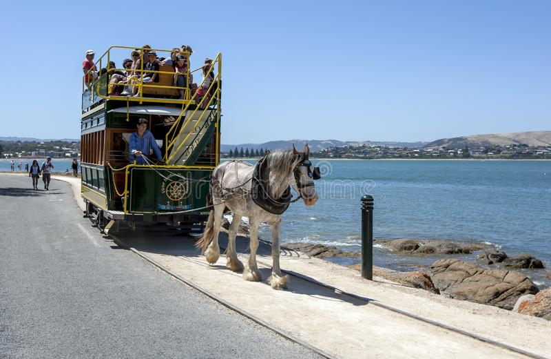 En utdragen spårvagn för häst i södra Australien arkivbild