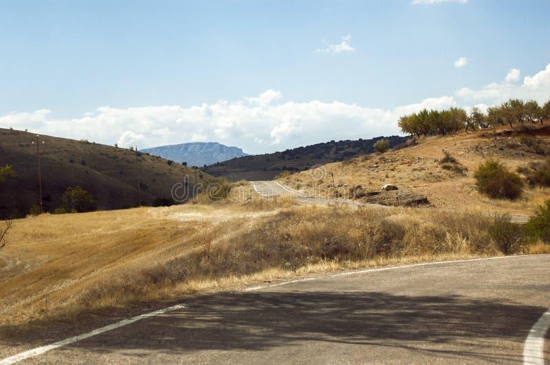 En väg mellan guld- ängar i sommar fotografering för bildbyråer