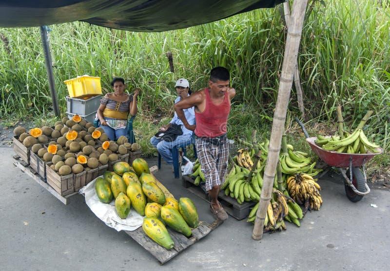 En vägrenfrukt stannar på Lima i Peru royaltyfria bilder
