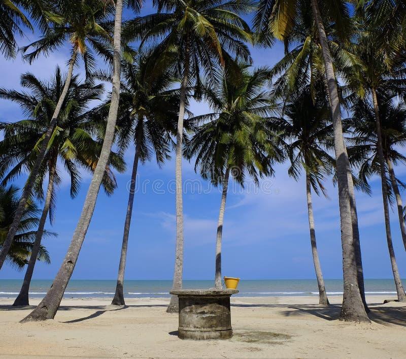En väl near strand fotografering för bildbyråer