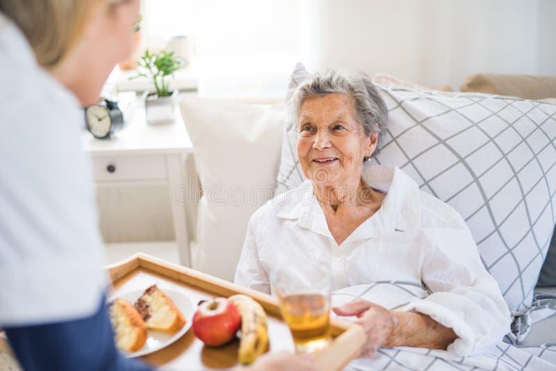 En vård- besökare som kommer med frukosten till en sjuk hög kvinna som hemma ligger i säng royaltyfria foton