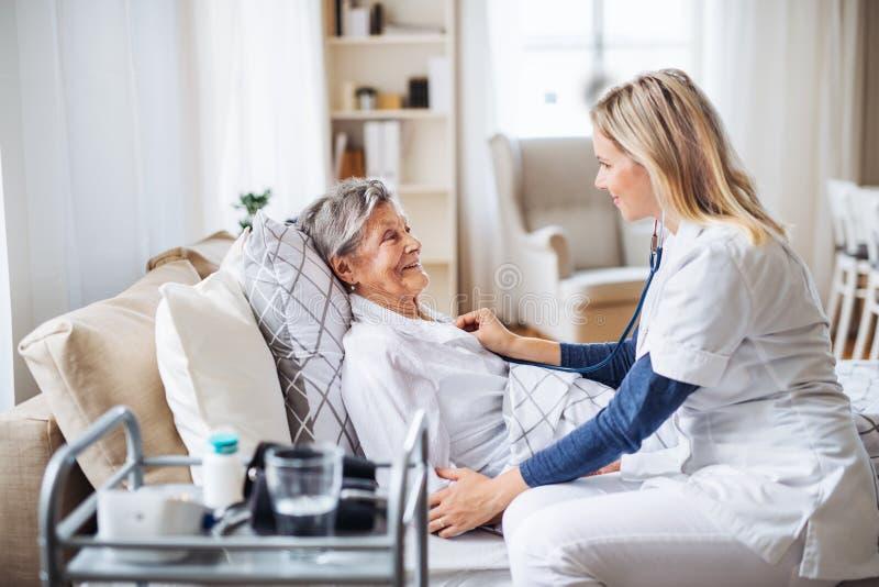 En vård- besökare som undersöker en sjuk hög kvinna som hemma ligger i säng med stetoskopet royaltyfria foton