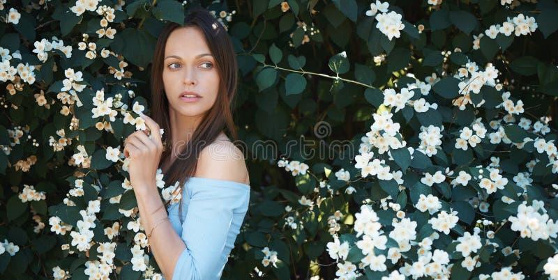 En vacker kvinna dyker upp i parken nära ett träd royaltyfria bilder